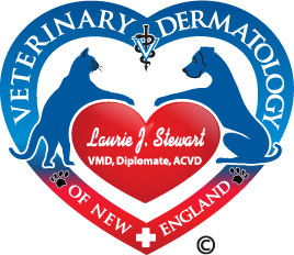 Veterinary Dermatology of New England